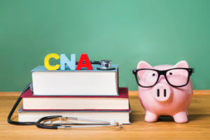 Certified Nursing Assistant CNA theme with pink piggy bank - CNA Training Institute